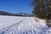 Brusinková zima