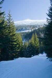 Břidličná hora