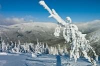 Malý Sněžník