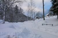 Zasněžená Dolní Morava