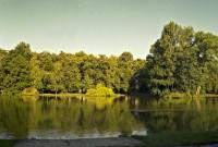 Olomoucký rybník, Uničovský rybník