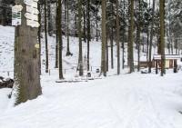 Koutecký les