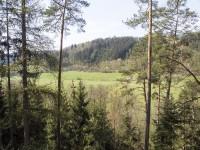 Obersko