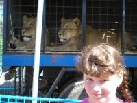 Ringelland Habrkovice lvi