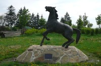 Pomník koňům padlým v bitvě u Slavkova