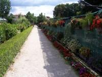 Zámecké zahradníctví