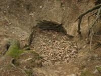 Studna v Žáku