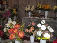 Za květinami, uměním a přírodou do Moravce na Žďársku