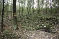 Studánka v přírodní rezervaci Blátka