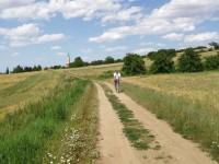 Polní cestou od Tištína k Švábenicím