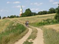 Polní cestou od kostela sv Michala ve Švábenicích