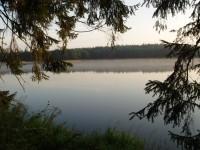Z Chlumu u Třeboně k rybníkům Medenice, Skalice a Svobodný