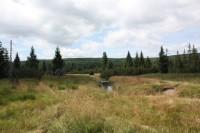Na kole k rašeliništi nad osadou Jizerkou