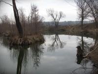 O slepých ramenech řeky Moravy na Slovácku
