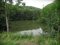 Chřiby - rybník Na Pile