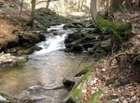 Procházka údolím Hučavy