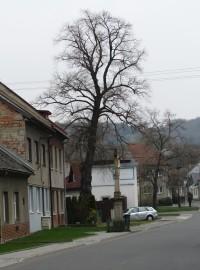 ulice vedoucí od Dřevnice do centra