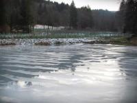 Trubiska  - rybníky