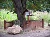 Chřiby - památné stromy u pomníku U Zabitého