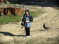 odchod od prlovské farmy
