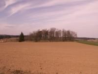Celkový pohled na židovský hřbitov Prudice