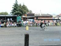 soutěžní disciplína barrel race