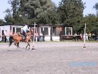 soutěžní disciplína pole bending