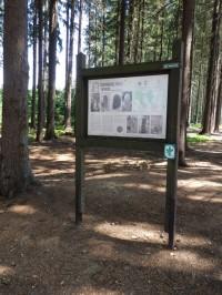 Informační tabule o hraničních kamenech Na Stráni