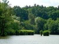 Horní rybník u Svitav