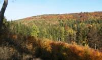 Údolí řeky Javorky v barvách podzimu