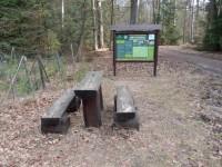 Naučná stezka Mrtvé dřevo v Hradeckých lesích