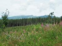 Nad Tremi studničkami - pohled na Západní Tatry