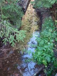 Východní potok