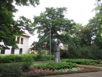 Park Botanika