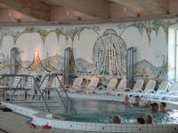 Bazén lázně Altenberg