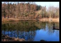 Borovecké rybníky