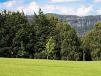 mezi stromy prosvítají skalní bloky hřenského údolí
