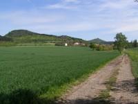 pohled na Oltářík z cesty za Dřemčicemi