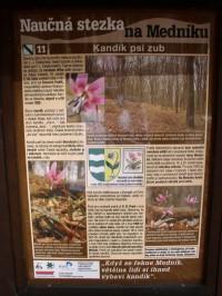 info panel o lokalitě výskytu kandíku psí zub