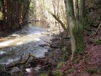 Konopišťský potok nad osadou Měsíční údolí - jaro