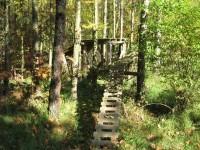 překážková dráha v lese za Kojeticemi