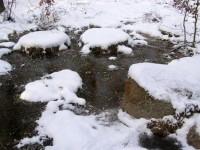 mlecí kameny v řečišti Zvánovického potoka