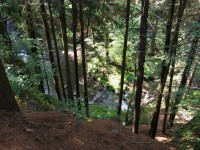 pohled do údolí Doubravy