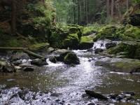 tok Doubravy kousek od můstku