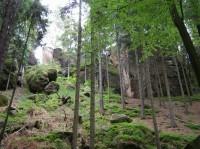 Skalní hrad Chlum nebo také Kozlov u Turnova