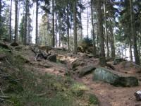 z cesty mezi Lesným a Ptačincem