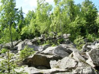 kamenné pole při výstupu na Muchov