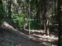 Dosud patrné dálniční těleso nedaleko Bunče