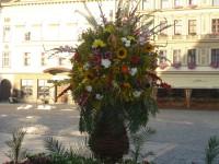 aranžmá Flora Olomouc