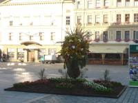 Nostalgickým motoráčkem na Floru Olomouc 2010